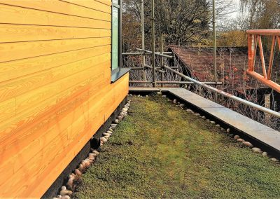Green Sedum Roof