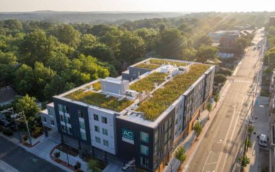 Green Roofs FAQs: Your Guide to Green Roofs