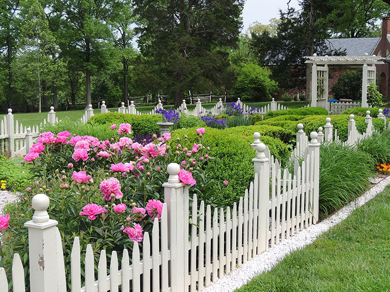 This is an image of white fencing in a garden