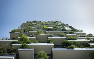 Why sustainable construction and architecture are good for business